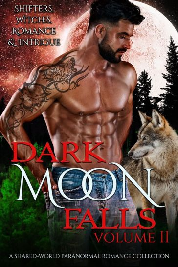 Dark Moon Falls 2 cover