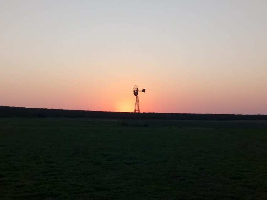 thali thali windmill