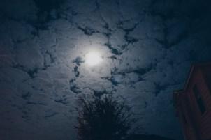 Night Sky by Tammie Riley