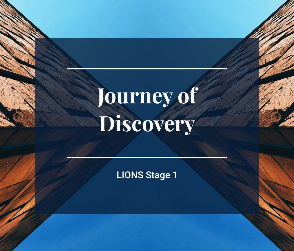 Lions Program Stage 1 Image