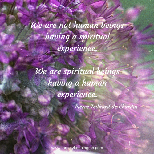 We are not human beings having a spiritual experience. We are spiritual beings having a human experience..png