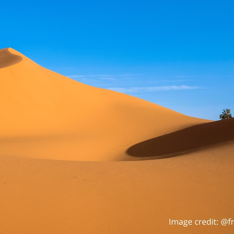 Desert sands with oasis in distance