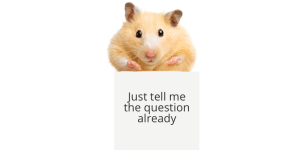 hamster on soapbox