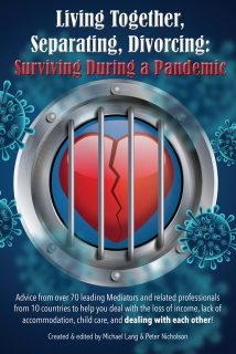 Living Together, Separating, Divorcing: Surviving During a Pandemic