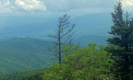 Appalachian Trail; Great Smoky Mountains; Virginia; Taum Sauk 5.31.2014