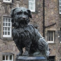 Greyfriars Bobby - Edinburgh's top dog