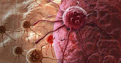 Ćelije raka pretvaraju u salo