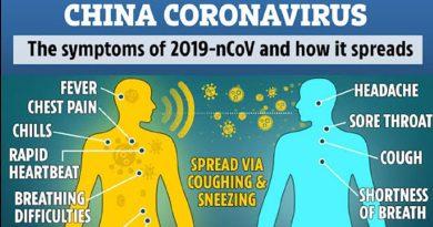 Koronavirus, panika, teorije zavere i šta nas još čeka?