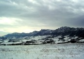 TAMOiOVDE-planine-100_8300