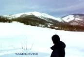 TAMOiOVDE-Planine-221220091701