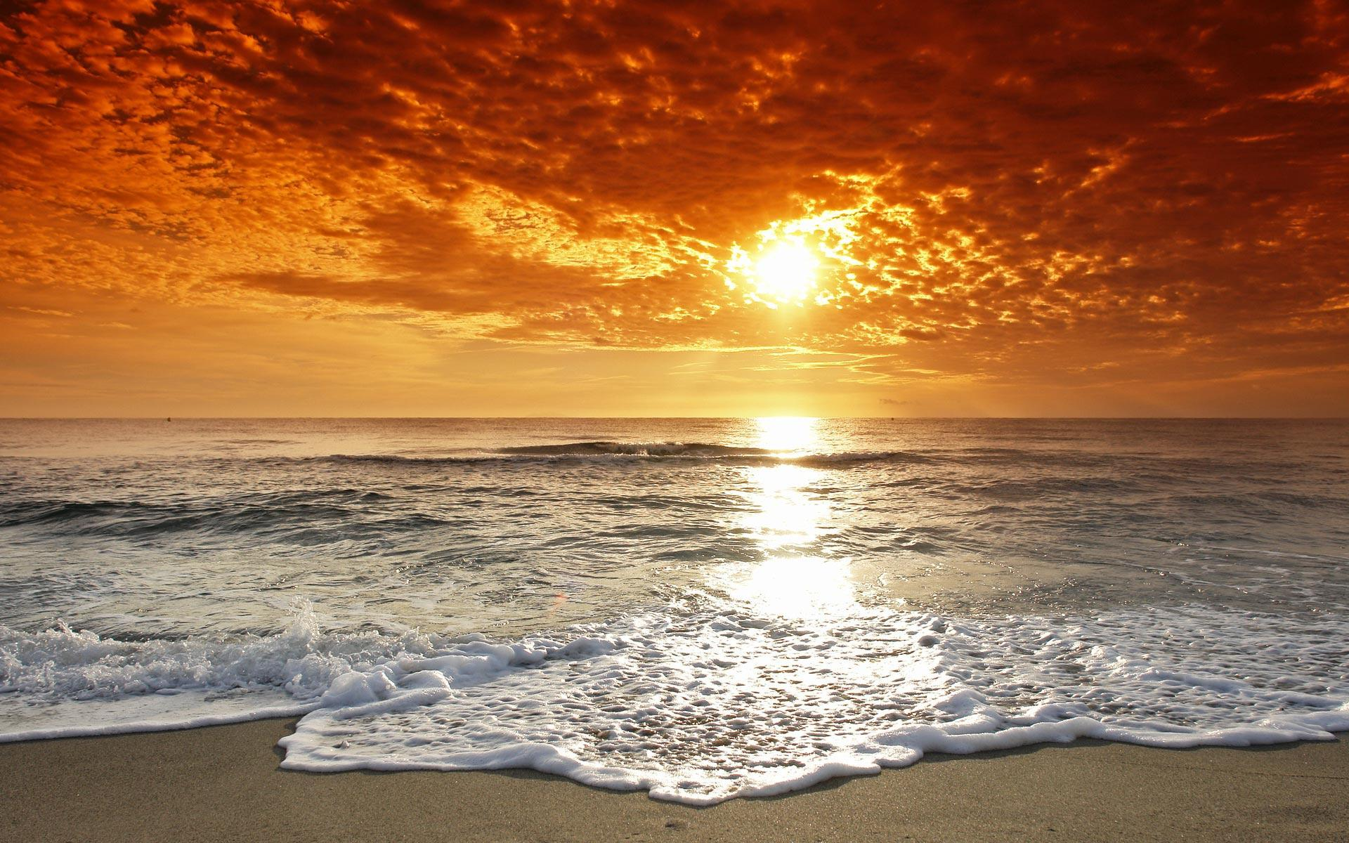 Sunset Beach Dates For Valentines Day Tampa Bay Date