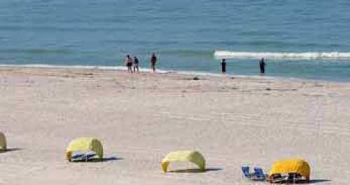 Apollo Beach FL Homes for Sale