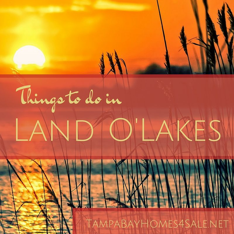 Things to Do in Land O' Lakes FL - Homes for Sale