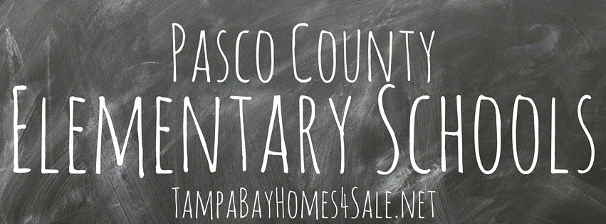 List of Pasco County Elementary Schools with Phone Numbers