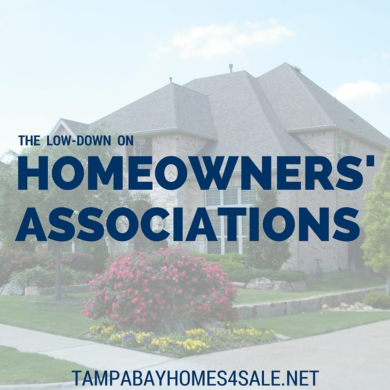 What is a Homeowners' Association - Tampa Bay Homes for Sale