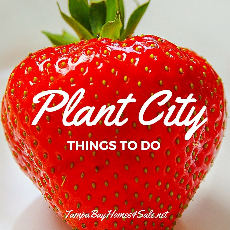 things to do in plant city - plant city homes for sale