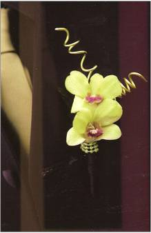 green dendrobium orchids boutonniere
