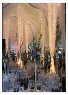 ceiling draping decorations