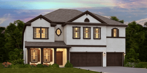 New Tampa Florida New Homes 33547