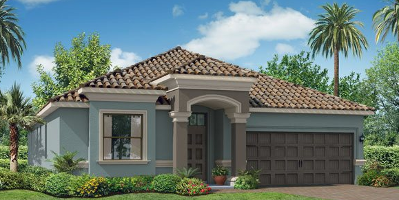 WATERLEAF FAWN LILY DRIVE RIVERVIEW FLORIDA 33579