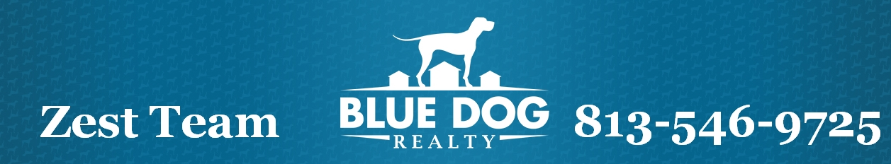 zest-team-bluedog