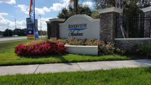 Riverview Meadows Riverview Florida New  Home Community