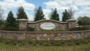 La Collina Manor | New Homes in Brandon, Florida