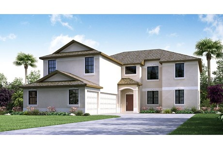 Belmont in Ruskin Florida New Construction From $219,490