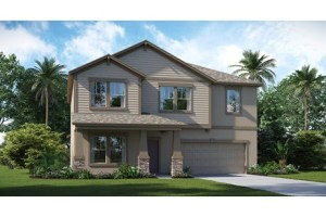Ballentrae New Homes Riverview Florida From $225,490 – $310,490