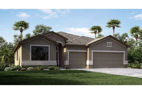 Collins Elementary School & New Homes Riverview Florida 33579