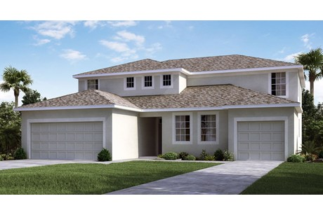 Real Estate Agents Selling New Homes Riverview, Florida