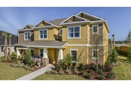 Taylor Morrison Homes Arbor Oaks Brandon Florida