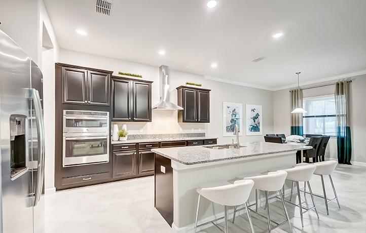 Southshore Bay Wimauma Florida New Houses Community