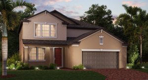 BRIARWINDS New Home Community Lutz Florida