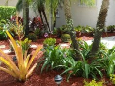 The Hernando County Florida-Friendly Landscaping (FFL) program offers classes and workshops year-round to help residents learn how to save time, money and water when maintaining their lawns and gardens. Residents are invited to participate in free, online learning through virtual, interactive classes for the month of November. These virtual classes will be presented by Florida-Friendl