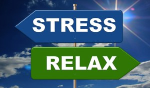 Yoga and the Stress Response