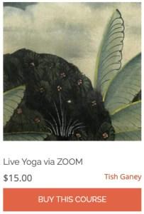 Live Yoga via ZOOM