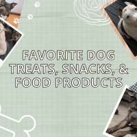 Favorite Dog Treats, Snacks, and Food-Related Products