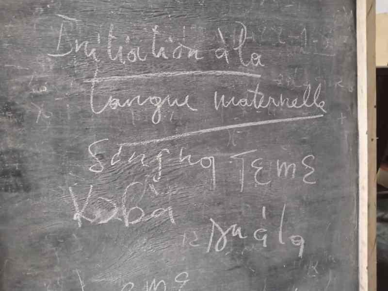 Quel avenir pour la diversité linguistique au Cameroun lorsque la 22e édition de la journée internationale de la langue maternelle passe aux oubliettes ?