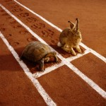 Network Marketing: Does Slow And Steady Win The Race?