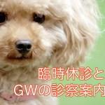 GWinfo