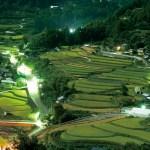田野々(たのの)| 徳島県上勝町