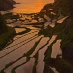 日没直前まで太陽が見えていたのは幸運だった。 撮影者:萩谷敦 撮影地:佐賀県玄海町 撮影日:2010年5月15日