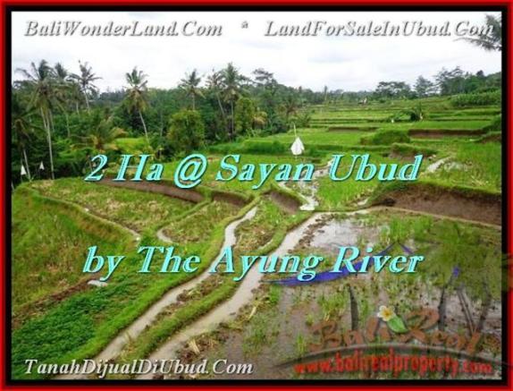 TANAH di UBUD BALI DIJUAL 20,000 m2  View tebing,sawah,sungai ayung