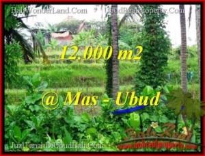 DIJUAL TANAH di UBUD BALI 12,000 m2 di Sentral Ubud