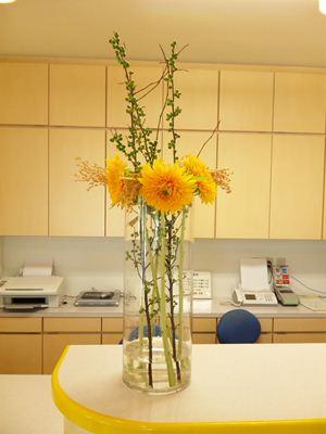 サンザシ ひまわり 東北八重 受付の花