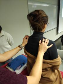 Hands-on demonstrations and practical learning in the foundations of Balance Method / System Acupuncture.
