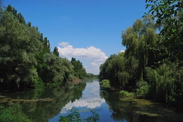 Река Кубань впадает в Азовское море: основные притоки и ...