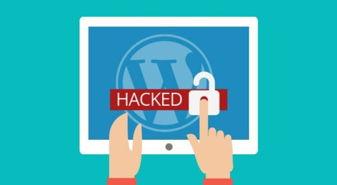 4 ways to Hacker-Proof your website