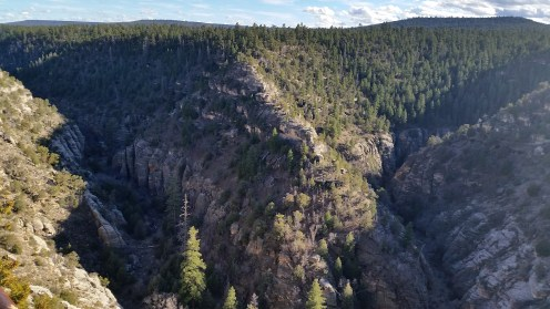 View from the rim trail at Walnut Canyon